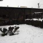 Zima únor 2013